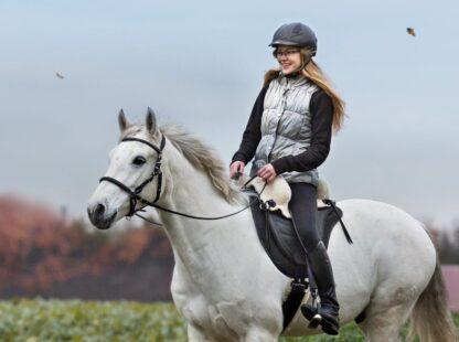 comfortable saddle