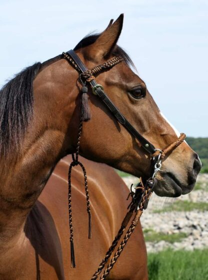 2-in-1 headstall