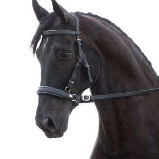 Bridles, Headstalls, Halters, and Nosebands