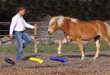 hobuse maatöö piire