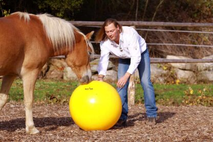 horse training ball