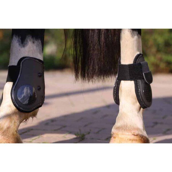 horse boot