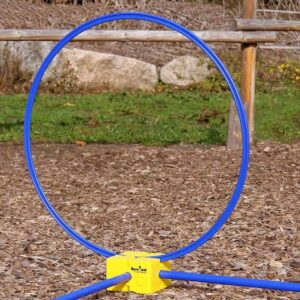 horse training hoop