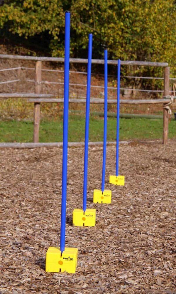 horse training pole
