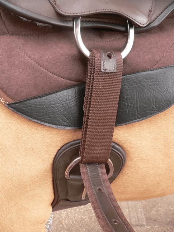 western cinch