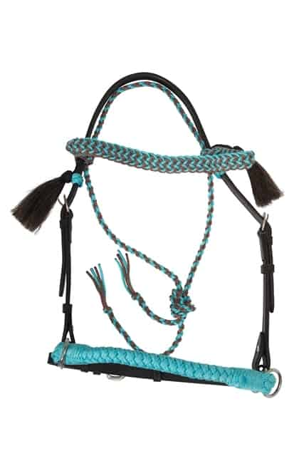 2-in-1 bridle